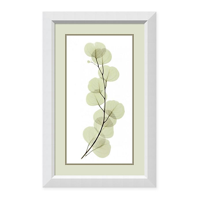 Alternate image 1 for Amanti Art® Acee Floral Photography 22-Inch x 34-Inch Acrylic Framed Print in White