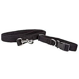Aero Mesh 2-In-1 Dog Leash-Collar