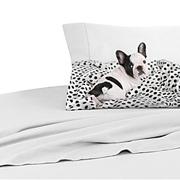 Rachael Hale® Lovable Mimi 200-Thread-Count Twin Pillowcase in Pale Grey