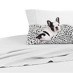 Rachael Hale® Lovable Mimi 200-Thread-Count Twin Pillowcase in Pale Grey