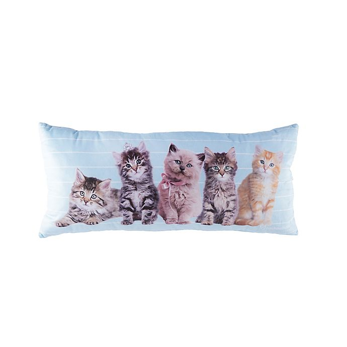 Alternate image 1 for Rachael Hale® Animals Cat Line-Up Oblong Throw Pillow