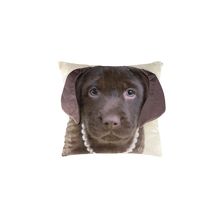 Alternate image 1 for Rachael Hale® Animals Cocoa Square Throw Pillow
