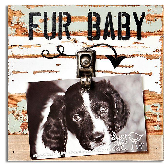 Alternate image 1 for Sweet Bird & Co. Fur Baby Clip Frame in Seafoam