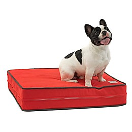 eLuxurySupply® Gel Memory Foam Orthopedic Dog Bed