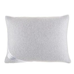 Brookstone® BioSense™ Charcoal-Infused Pillow in White