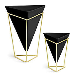 Umbra Trigg Table Top Planters in Black (Set of 2)