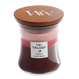 WoodWick® Trilogy Fruit Temptation 10 oz. Jar Candle