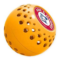 Arm & Hammer ™10-Pack Odor Absorber in Orange