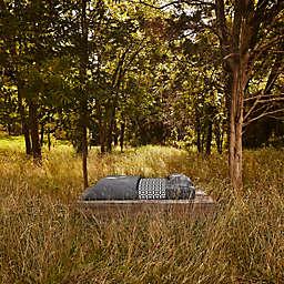 Calvin Klein® Modern Cotton Body Bedding Collection