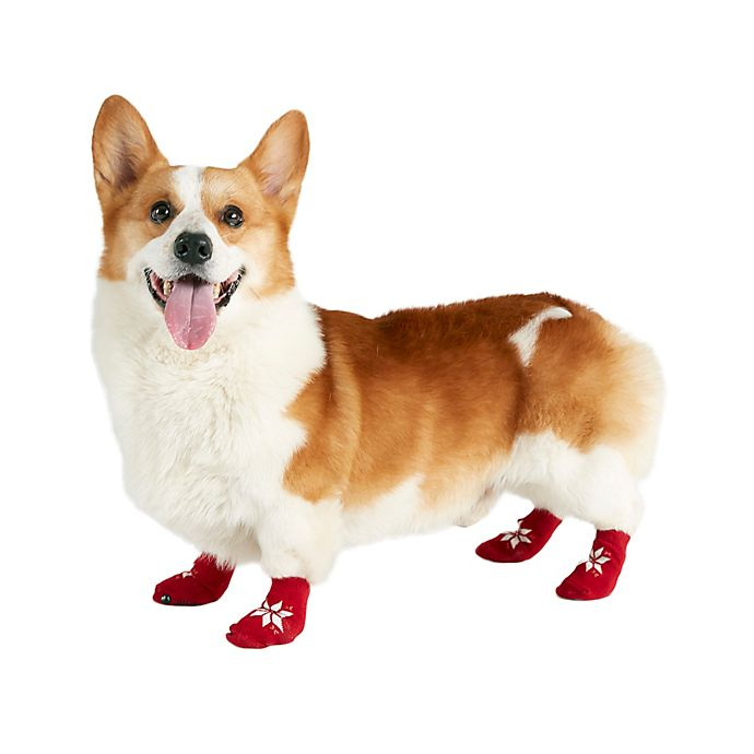 Alternate image 1 for Bee & Willow™ Fair Isle Printed Dog Socks in Red