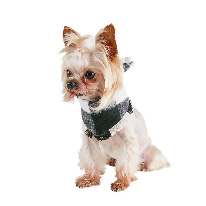 Alternate image 1 for Bee & Willow™ Buffalo Check Dog Bandana in Black/White