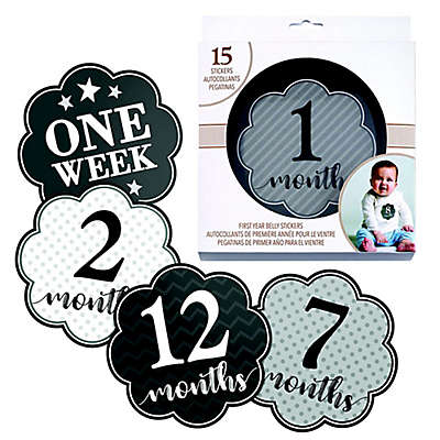 Lillian Rose™ Milestone Belly Stickers in Grey