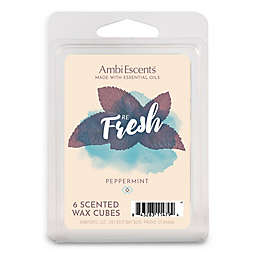 AmbiEscents™ Refresh Peppermint 6-Pack Wax Fragrance Cubes