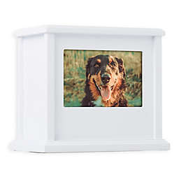 Pearhead® Pet Memory Keepsake Box in White