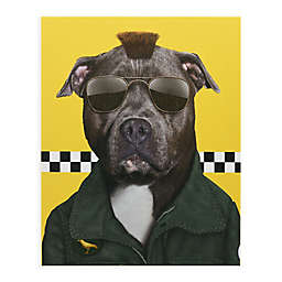 Pets Rock Cabbie 16-Inch x 20-Inch Canvas Wall Art
