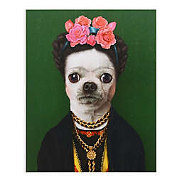 Pets Rock Mexico 16-Inch x 20-Inch Canvas Wall Art