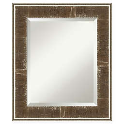 Amanti Art Farmhouse Vanity Mirror in Brown