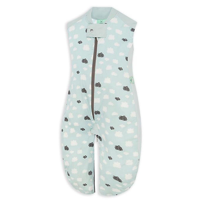 Alternate image 1 for ergoPouch® Organic Cotton Sleep Suit Bag in Mint Clouds
