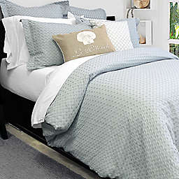 Alamode Home Dover Twin Duvet Cover Set in Silver/Blue