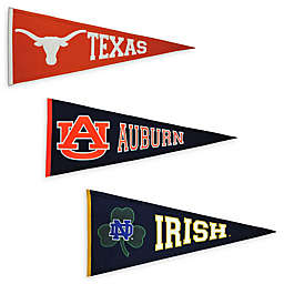Collegiate Traditions Pennant Banner Collection
