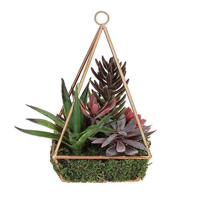 Northlight® 9-Inch Succulent Plants in Copper Pyramid Frame | Bed