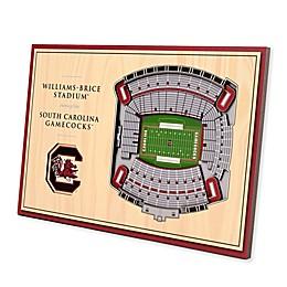 University of South Carolina 3D StadiumView Desktop