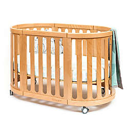 Cocoon Nest 4-in-1 Convertible Crib in Natural