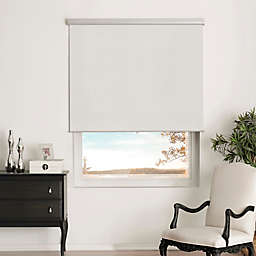 Brielle Shimmer Blackout Cordless 66-Inch Length Roller Shade