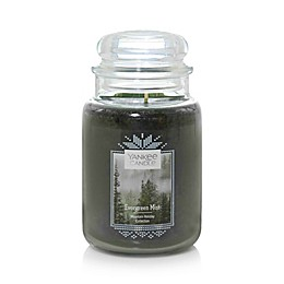 Yankee Candle® Evergreen Mist Large Classic Jar Candle