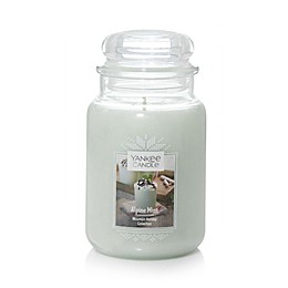 Yankee Candle® Housewarmer® Alpine Mint Large Classic Jar Candle