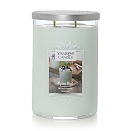 Yankee Candle® Housewarmer® Alpine Mint Large Tumbler Candle