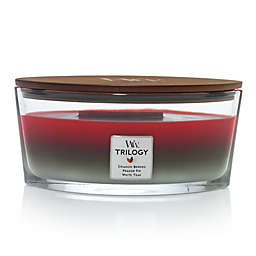 WoodWick® Trilogy Winter Garland Large Oval Jar Candle