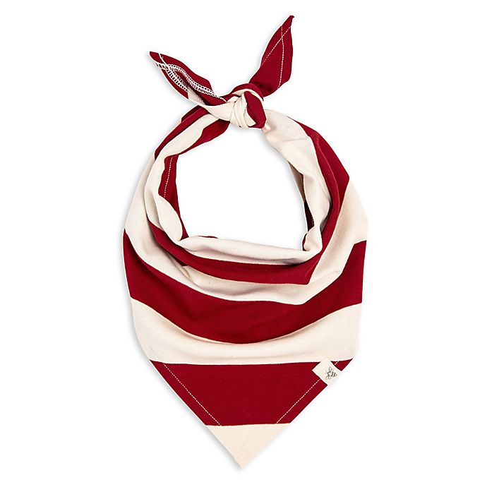 Alternate image 1 for Burt's Bees Baby® Rugby Stripe Organic Cotton Dog Bandana in Red/Ivory