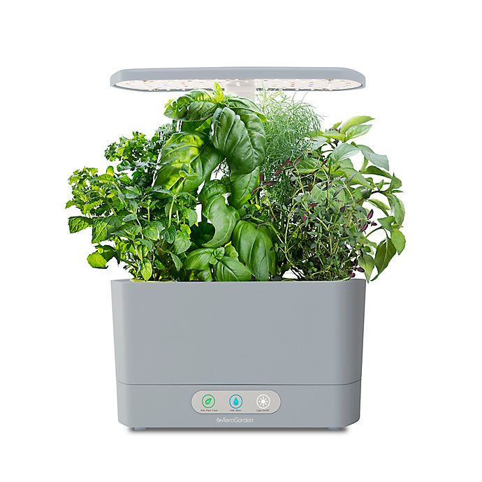 Alternate image 1 for AeroGarden™ Harvest with Gourmet Herb Seed Pod Kit in Cool Grey
