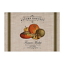 Autumn Harvest Placemats in Natural (Set of 4)