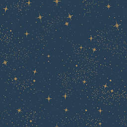 Roommates Upon A Star Peel & Stick Wallpaper in Navy