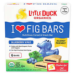 Little Duck 6-Pack Blueberry Kale Fig Bars