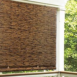 Reed Cordless Roll-Up Shade