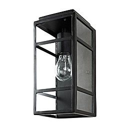 Varaluz Wholigan 1-Light Wall Sconce in Carbon