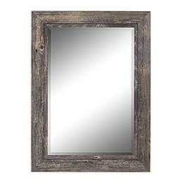 Hitchcock-Butterfield Coastal II Wall Mirror in Grey