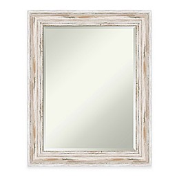 Amanti Art Alexandria 23-Inch x 29-Inch Wall Mirror in White