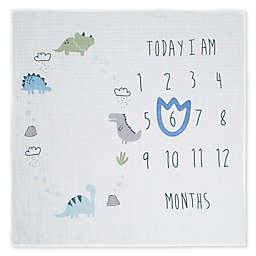 Gerber® See Me Grow Dinosaur Blanket in Ivory/Blue