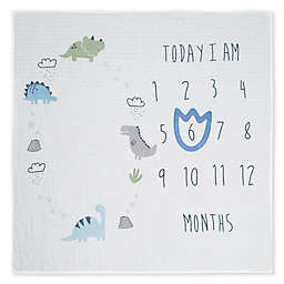 Gerber® See Me Grow Dinosaur Blanket in Ivory/Blue