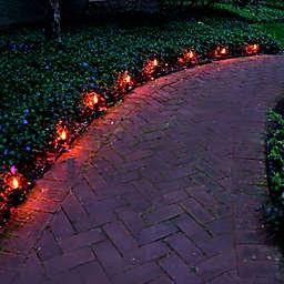 LumaBase Flickering Electric Pathway Light in Orange (Set of 8)