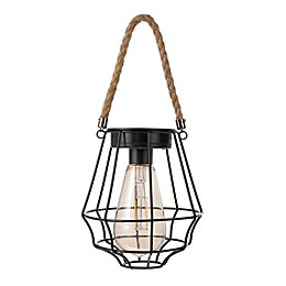 Destination Summer Solar Cage Lantern Light in Black