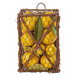 Bee & Willow™ Home Lemon Grapevine Lantern Potpourri Bag