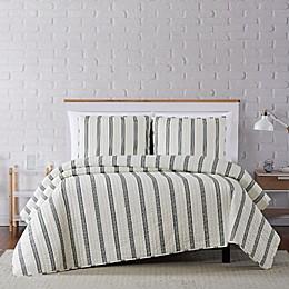 Truly Soft® Millenial Stripe Quilt Set