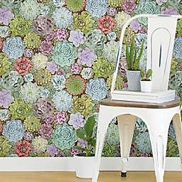 Roommates® Succulents Vinyl Peel & Stick Wallpaper