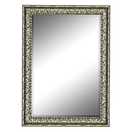 Hitchcock-Butterfield Museo 41.25-Inch x 53.25-Inch Wall Mirror in Silver
