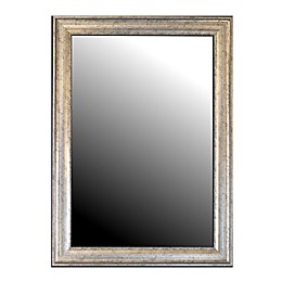Hitchcock-Butterfield Sheffield 41-Inch x 53-Inch Wall Mirror in Silver